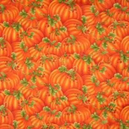 Pumpkin Patch (Fall Holidays)