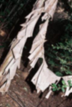 17DEC02001482-004_re.jpg