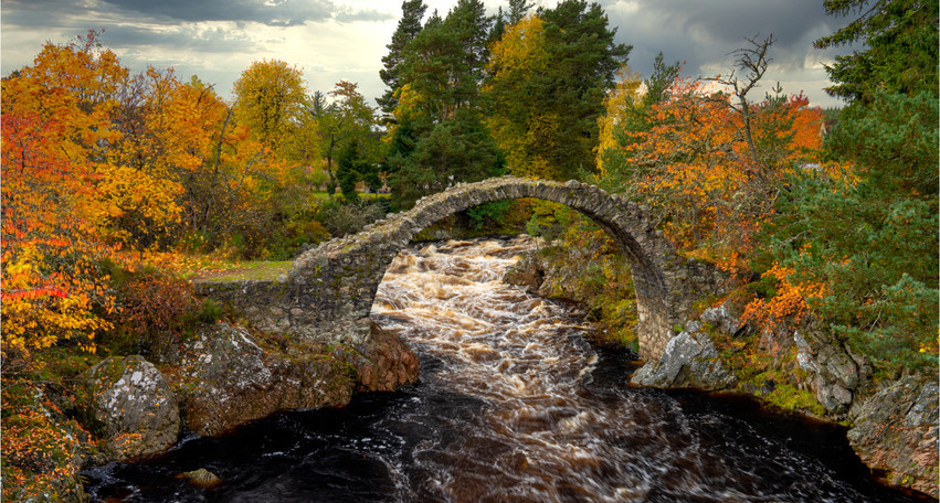 Bridge over troubled waters