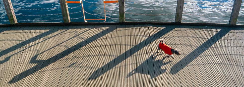 Shadows: Richard Greswell