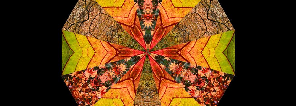 30 Autumn Kaleidoscope