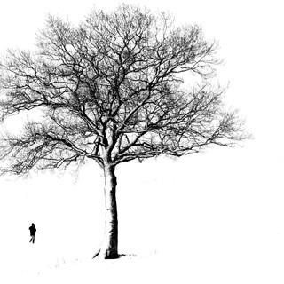 Print: 3rd - Winter Walk