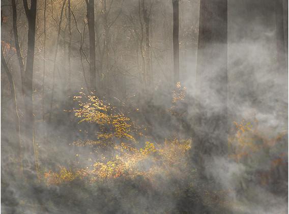 03 Impression of autumn