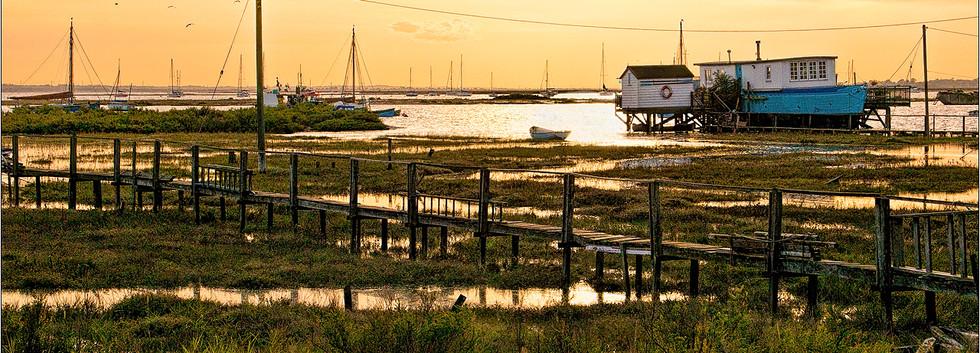 Mersea Island: Hugh Thompson