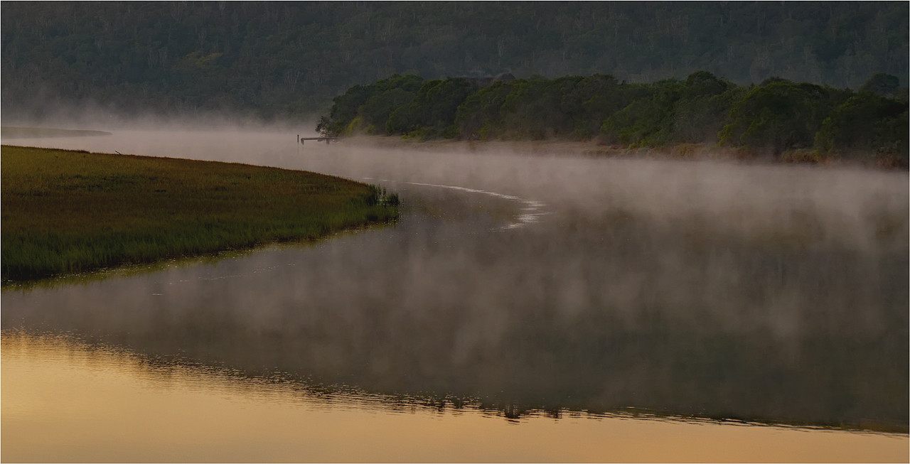 13 Misty River Morning.jpg