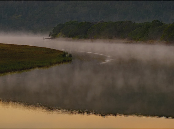 13 Misty River Morning.jpg