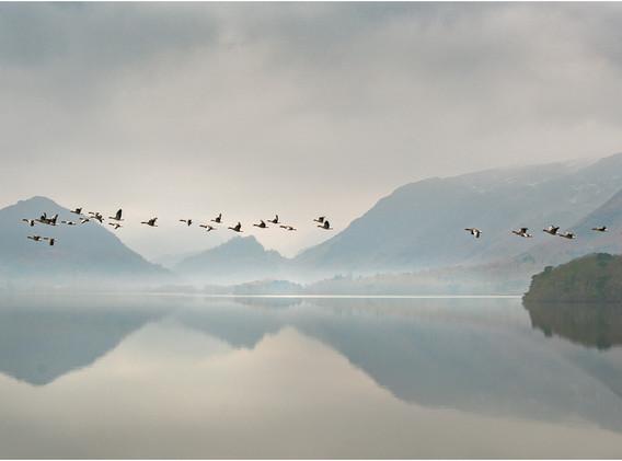 07 Winter flypast, Derwent water