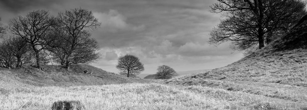 Burrow Hill Fort