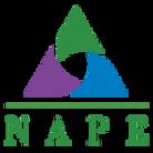 NAPE-Logo-Simple-ogmshjqrnukhzbsdzx3jfou
