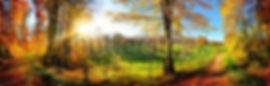 панорамы.jpg