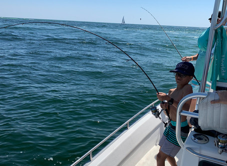 Another banner day fishing out of destin at the west jetty.