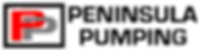 Rasterized transparent background PP log