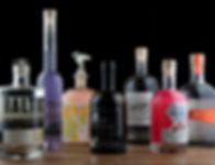 Bespoke gins group photo.jpg