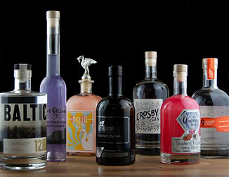 Bespoke gins group photo.jpg