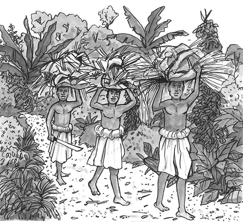 Head loads of palm fronds