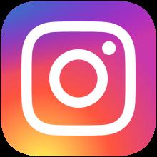 220px-Instagram_logo_2016.svg
