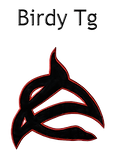 Birdysign Final logo size 700.png