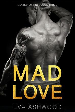 Mad Love Redo Ebook.jpg
