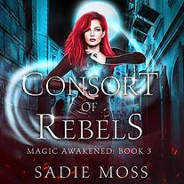 Consort of Rebels AUDIO MAY.jpg