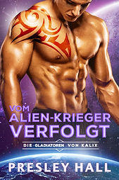 Stolen_GERMAN_Ebook_FINAL.jpeg