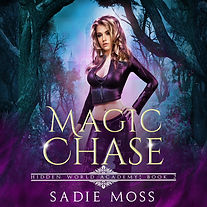 Magic_Chase_Audiobook.jpg