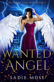 Wanted_Angel_Ebook_Cover.jpg