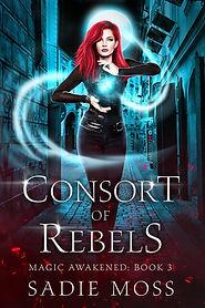 Consort of Rebels Ebook MAY.jpg