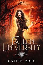 FU Year One Cover.jpg