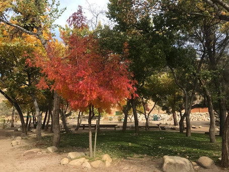 Camping on the Kern in Fall is Fantastic!