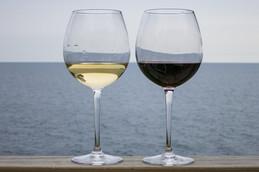 Successo nella promozione del vino in Cina