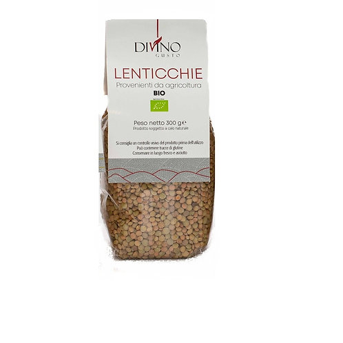 Organic Variegated Lentils 300g