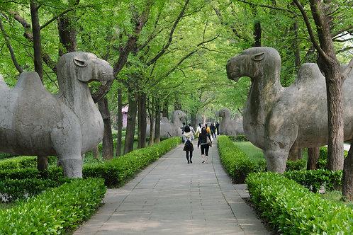 Nanjing - La capitale del Sud