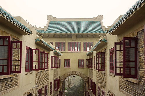 Wuhan discovery