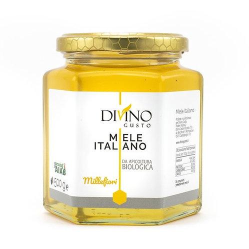 Organic Wildflower Honey 500gr