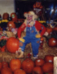 Corney Sue the Scarecrow.jpg