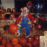 Corney Sue is a delightful fall season scarecrow who's lost and the children help her find her way. She encourages the children to make good choices on the foods they eat (whole foods VS junk food).