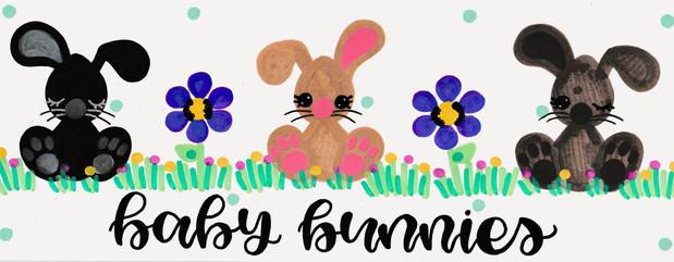 Design: Baby Bunnies