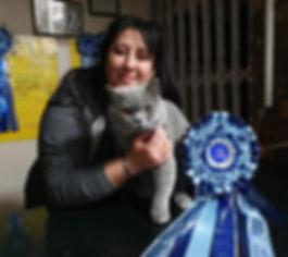 Feline Magic A Million Reason_edited.jpg