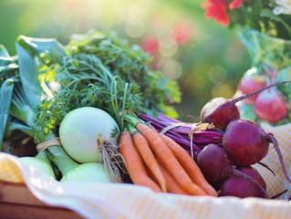 Actualización del Reglamento para los alimentos en la Unión Europea