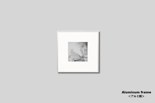花の写真,ユリ,インテリア,インテリアフォト,アート,モノクロ,額入り,額装,オリジナルプリント,アートフレーム,フォトフレーム,おしゃれ,モダン,壁掛け,壁飾り,装飾
