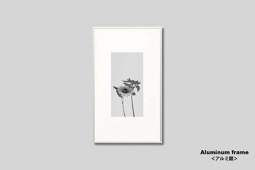 花の写真,ひまわり,アートポスター,モノクロ,インテリアフォト,額入り,額装,フォトフレーム,おしゃれ,新築祝い,プレゼント,モダン,壁掛け,壁飾り,装飾,オリジナルプリント