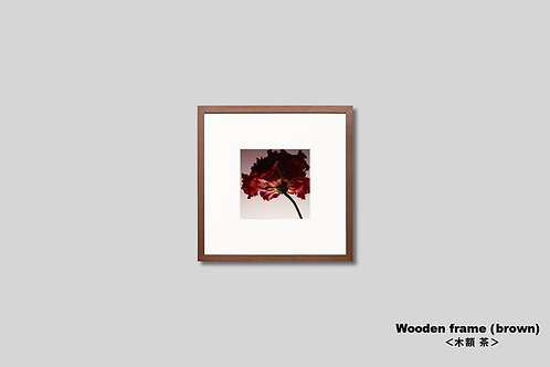 花,写真,正方形,インテリア,プレゼント,トルコキキョウ,赤い花,インテリアフォト,アート,額入り,額装,アートフレーム,フォトフレーム,おしゃれ,モダン,壁掛け,壁飾り,装飾