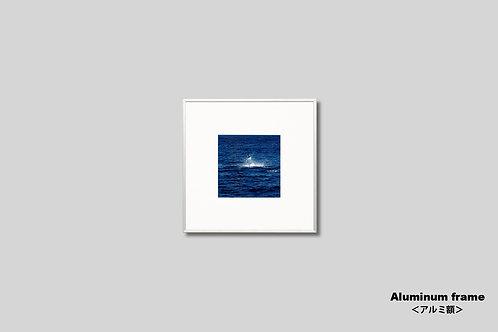 海,写真,額入り,壁掛け,インテリア,魚,カジキ,風景,自然,インテリアフォト,アート,額装,正方形,オリジナルプリント,ジャンプ,アートフレーム,フォトフレーム,壁飾り,装飾,ウォールアート