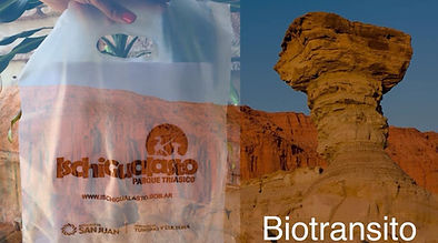Ischigualasto Bag Biodegradable
