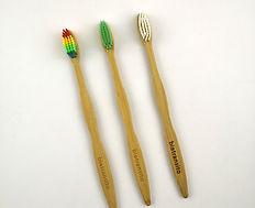 Celillos de Dientes de Bambu