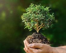 Medio Ambiente Bio Transito