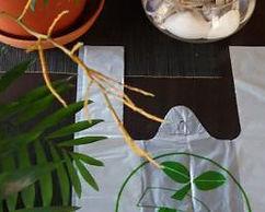 Bolsas Ecologicas 30x40 Biotransito