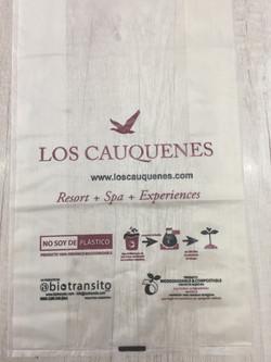 Bolsa Los Cauquenes Spa Resort