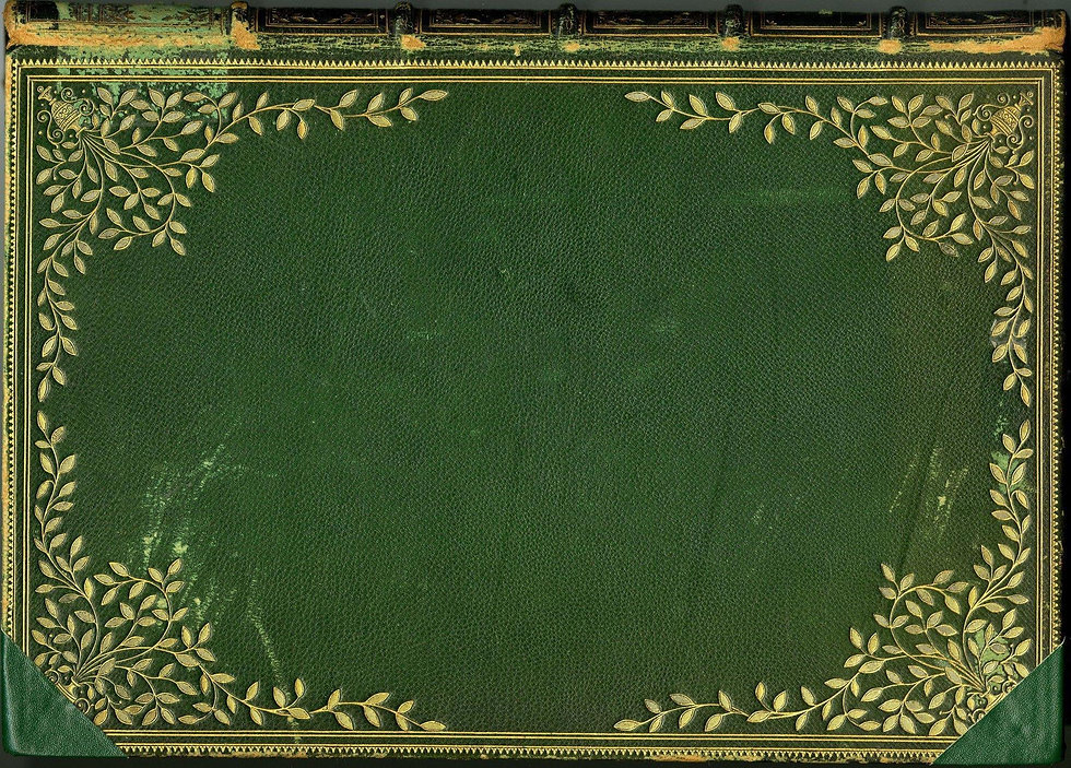 Green leather book cover.jpg