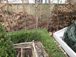 Hazel fence panels to repair1